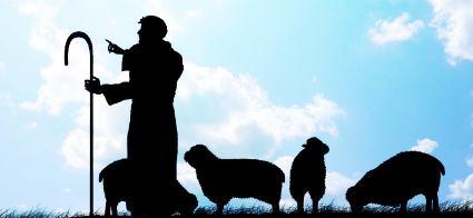 Shepherd leading