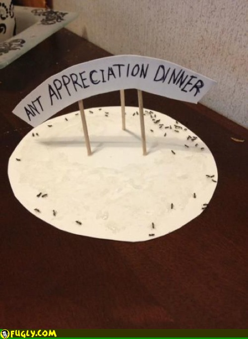 ant appreciation dinner(jerry King)