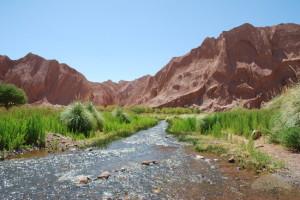 river-in-the-desert