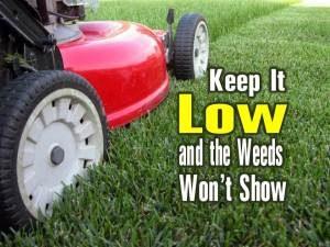 Keep-It-Low-300x225.jpg