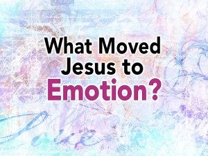 Jesus-Emotion-Pict-1-300x225.jpg