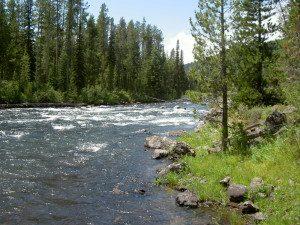 river1-300x225.jpg