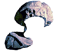 Semitic Statue Front