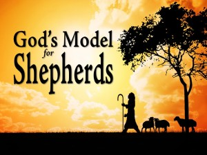 God's Model for Shepherds (Pict 1)