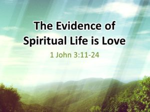 evidence-of-spiritual-life-is-love-pict-1